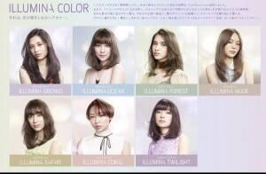 ash-hair.com
